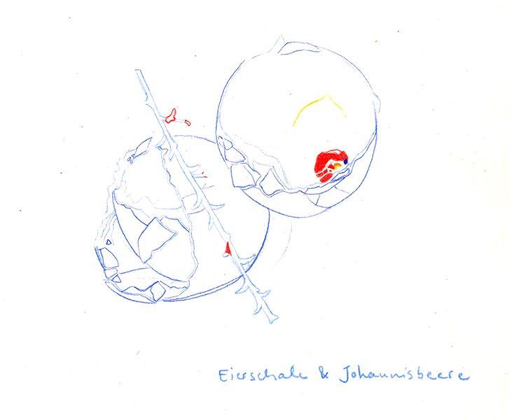 Eierschale und Johaninsbeere